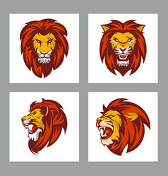 set lions head for mascot or logo vector image