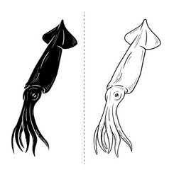 squid silhouette sea animal vector image