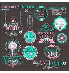 Vintage Labels Set for Beauty and Health Industry vector image