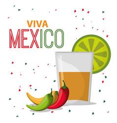 Viva mexico greeting drink confetti vector