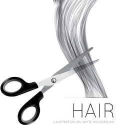 Hair and scissors on a white background vector image