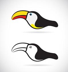 Hornbills vector image vector image