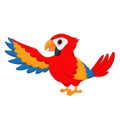 macaw bird cartoon vector image vector image