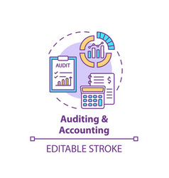 Auditing and accounting concept icon vector