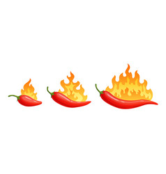 cartoon hot peppers spicy pepper with fire flames vector image