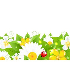 Flower Border With Ladybug vector image