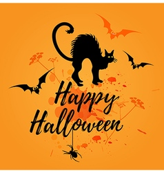 Halloween orange background with cat vector