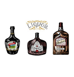 liquor in a glass bottle alcoholic beverage vector image