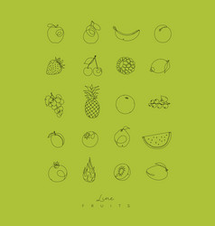 pen line fruits icons green vector image vector image