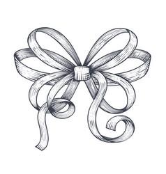 ribbon bow black hand drawn sketch vector image