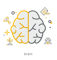 thin line icons brain vector image