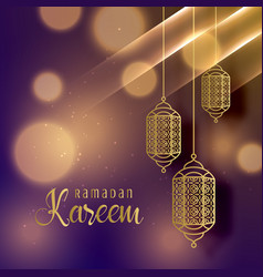 beautiful hanging lamps for ramadan kareem season vector image