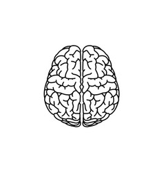 brain line icon black vector image