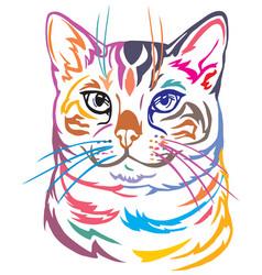 Colorful decorative portrait of bengal cat vector