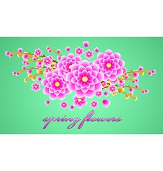 Delicate bouquet of spring forest flowers for your vector image