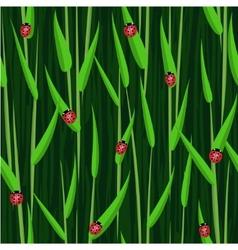 Grass ladybird seamless background vector