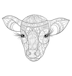 Adult coloring bookpage a cute head of calf image vector