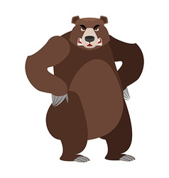 Angry bear on its hind legs Aggressive Grizzly on vector