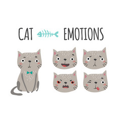 Cute cat set of emotions vector