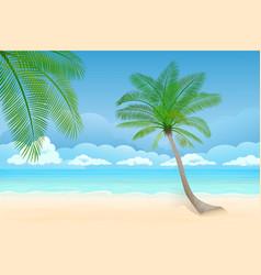 paradise beach ocean on background vector image