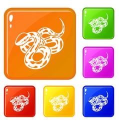 Texas snake icons set color vector