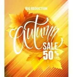 Big fall sale poster design vector image