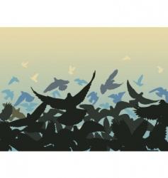 pigeon edge vector image vector image