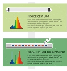 Features led and fluorescent lamps vector image vector image