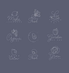 fruits and vegetables pen line symbols grey vector image vector image