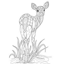 Adult coloring bookpage a cute deer vector