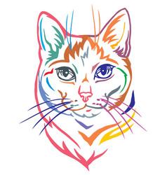 Colorful decorative portrait mongrel cat vector