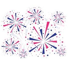 Fireworks on white vector image