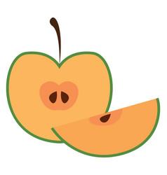 half apple or color vector image