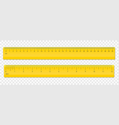 ruler centimeter and inches scale plastic vector image