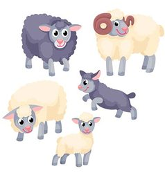 Tree adult sheep with two young lambs on the white vector image