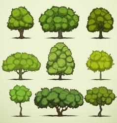 Cartoon deciduous trees vector image vector image