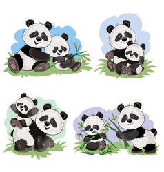 Cartoon set of cute panda bear characters vector