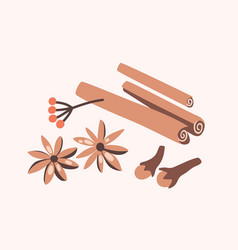Cinnamon sticks cloves and star anise isolated on vector