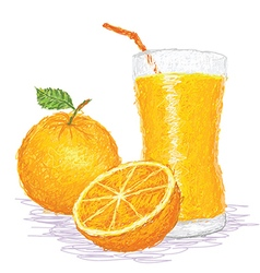 Closeup of a fresh orange fruit and a glass of vector