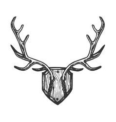 deer horns engraving vector image