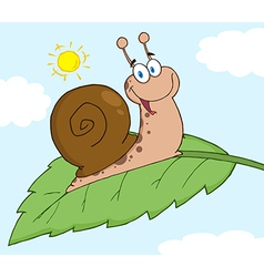 Happy Snail On A Leaf vector image vector image
