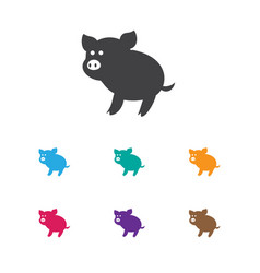 of zoo symbol on piggy icon vector image
