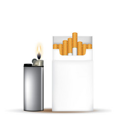pack cigarettes with lighter vector image