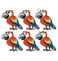 parrot with different emotions vector image