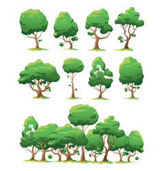set of trees of various forms vector image