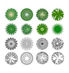 Symbols trees vector