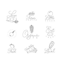 vegetables and fruits pen line symbols vector image
