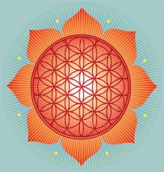 Sacred Geometry flower of life orange mandala vector image vector image
