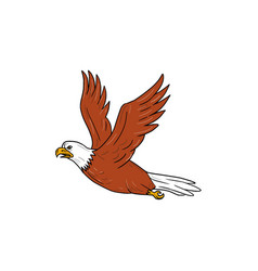 angry eagle flying cartoon vector image vector image