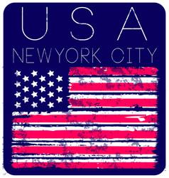 american grunge flag an grunge flag vector image